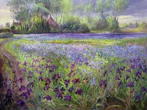 Trackway Past the Iris Field, 1991 by Timothy Easton
