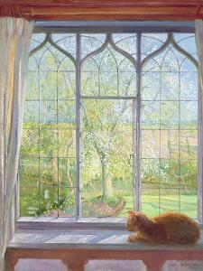 Window in Spring, 1992 by Timothy Easton