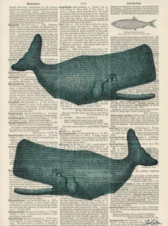 Sperm Whale by Tina Carlson
