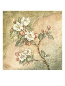 Burlap Cherry Blossom by Tina Chaden