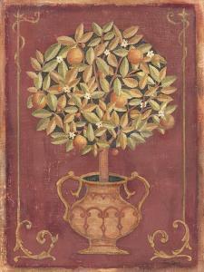 Orange Tree by Tina Chaden
