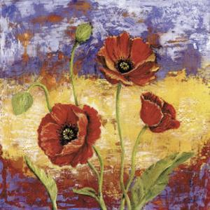 Ruby Red Poppies by Tina Chaden