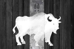 Bufalo Blanco Lodge by Tina Lavoie