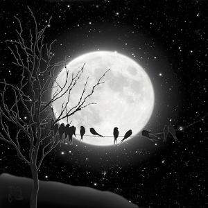 Moon Bath I by Tina Lavoie