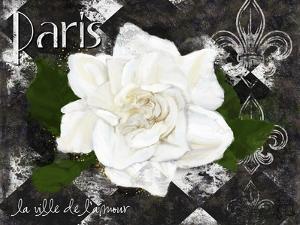 Paris La Vill De L'amour by Tina Lavoie