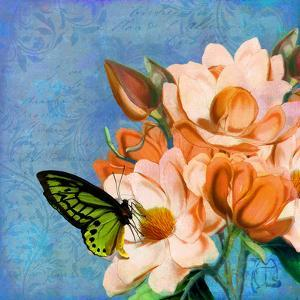 Periwinkle by Tina Lavoie