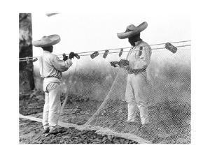 Fishermen with Nets, Mexico, C.1926 by Tina Modotti
