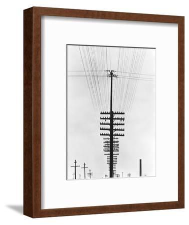 Telegraph Wires, Mexico, 1925