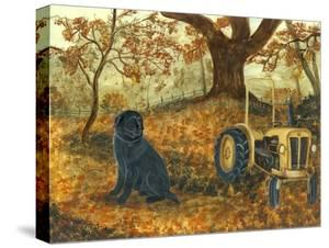 Autumn Labrador by Tina Nichols