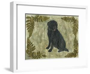 Black Dog by Tina Nichols