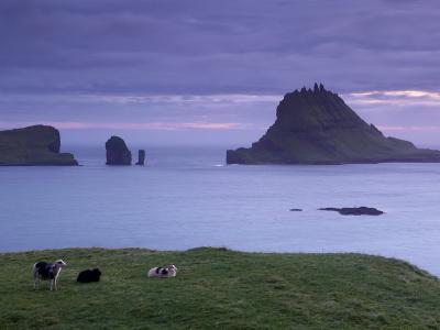 Tindholmur Island Rising to 262 M, and Drangarnir Natural Arch at Sunset, with Sheep, from Vagar-Patrick Dieudonne-Photographic Print