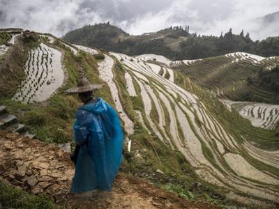 Longji Rice Terraces in China's Guangxi Province by Tino Soriano