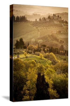 Vineyards and Rolling Hills Near San Gimignano at Dawn
