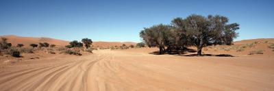 Tire Tracks in an Arid Landscape, Sossusvlei, Namib Desert, Namibia--Photographic Print