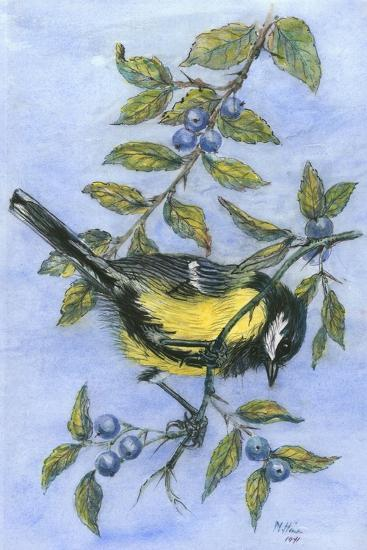 Tit in Blackthorn and Sloe-Nell Hill-Giclee Print