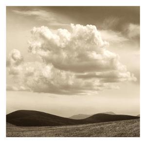 Cloudscape by TM Photography