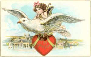 To My Valentine, Cupid Riding Dove
