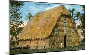 Tobacco Barn, Cuba