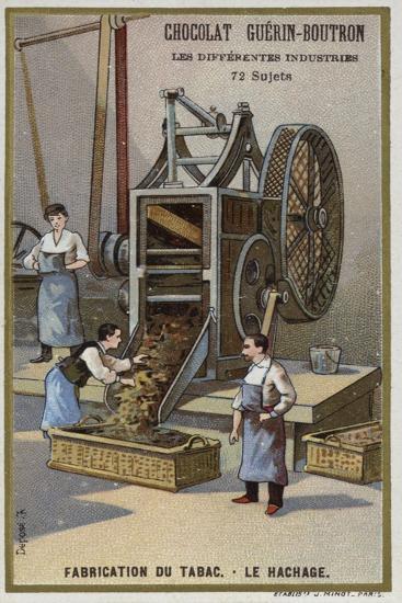 Tobacco Manufacturing. Shredding Leaves--Giclee Print