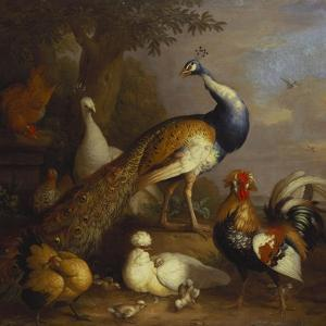 A Peacock, a Peahen and Poultry in a Landscape by Tobias Stranover