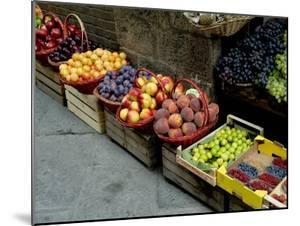 Assorted Fresh Fruits of Berries for Sale at a Siena Market, Tuscany, Italy by Todd Gipstein