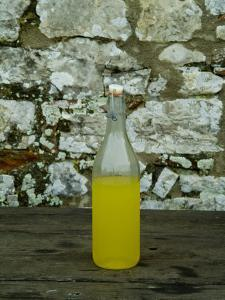 Bottle of Limoncello Sits on a Picnic Table at a Tuscan Villa, Tuscany, Italy by Todd Gipstein