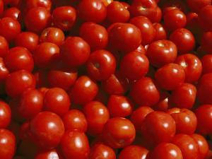 Close-up of Tomatoes at a Market in Helsinki by Todd Gipstein