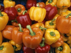 Red, Orange and Yellow Bell Peppers on Display in a Venice Market by Todd Gipstein