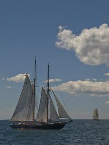 Tall Ships Sailing at the Parade of Sail in Newport, Rhode Island, USA by Todd Gipstein