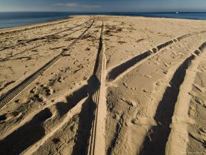 Tire Tracks Leading to the North Point of Block Island, Rhode Island by Todd Gipstein