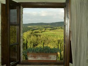 Window Looking Out Across Vineyards of the Chianti Region, Tuscany, Italy by Todd Gipstein