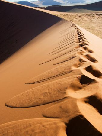 Footprints on Ridge of Sand Dune