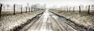 Picket Path by Todd Ridge