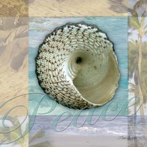 Peace Shell by Todd Williams
