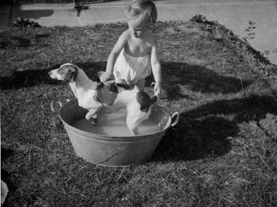 Toddler Giving Dog a Bath in the Garden--Photographic Print