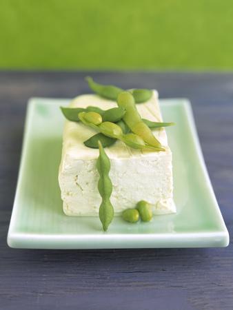 https://imgc.artprintimages.com/img/print/tofu-and-soybeans_u-l-q10spg10.jpg?artPerspective=n