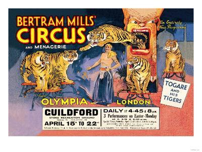 Togare and his Tigers: Bertram Mills' Circus and Menagerie--Art Print