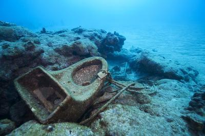 Toilet Bowl Resting on Coral Reef in Dominican Republic-Paul Souders-Photographic Print