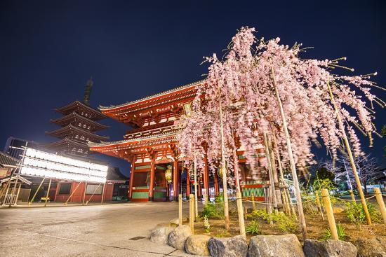 Tokyo, Japan at Senso-Ji Temple in the Asakusa District.-SeanPavonePhoto-Photographic Print