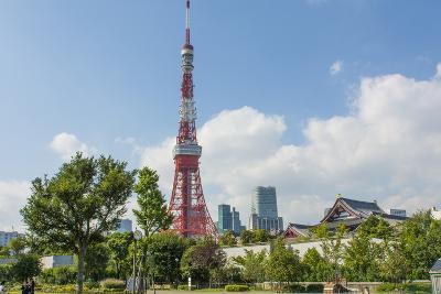 Tokyo, Japan. Tokyo Tower and the Zojo-Ji Temple in Shiba Neighborhood-Bill Bachmann-Photographic Print