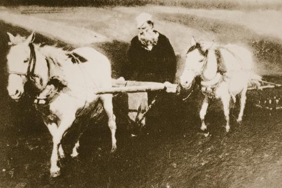 Tolstoy Working in the Fields, C.1905-10--Photographic Print