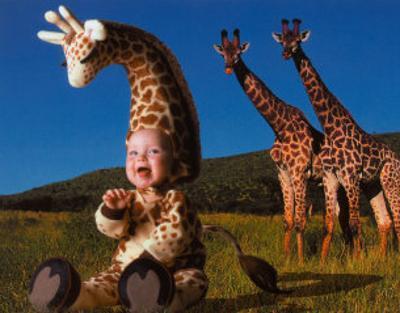 Imaginary Safari, Giraffe