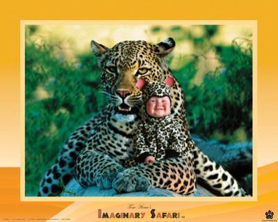 Imaginary Safari, Leopard