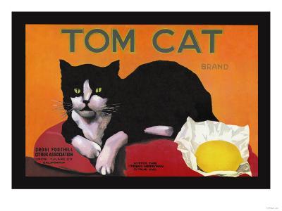 Tom Cat Brand--Art Print