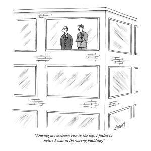 """During my meteoric rise to the top, I failed to notice I was in the wrong?"" - New Yorker Cartoon by Tom Cheney"