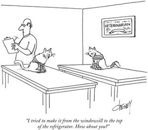 """I tried to make it from the windowsill to the top of the refrigerator. Ho…"" - New Yorker Cartoon by Tom Cheney"
