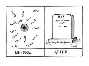 """Two frames: the first showing sperm and an egg and labeled """"Before;"""" the s? - New Yorker Cartoon by Tom Cheney"""