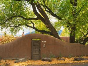 Contoured Adobe Wall, Santa Fe, New Mexico by Tom Haseltine