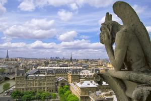 Gargoyle on the roof of Notre Dame cathedral looks out over Paris, France. by Tom Haseltine