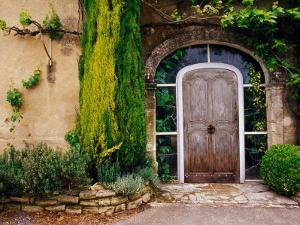 Greenery Surrounding Wooden Door, Provence, France by Tom Haseltine